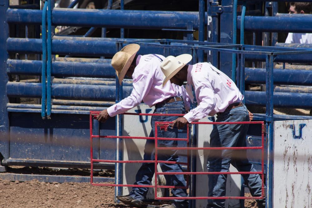 Rodeo Cowboys Photography Art | Dan Katz, Inc.