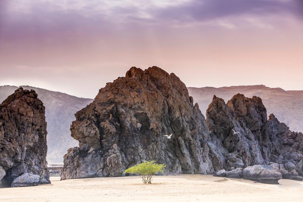 Lady Of Oman Photography Art | Laura Tidwell Photography