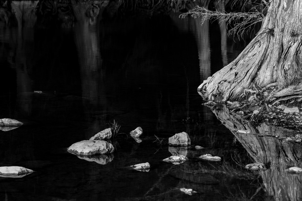 tree, trees, river, water, Guadalupe River, hill country, Photo