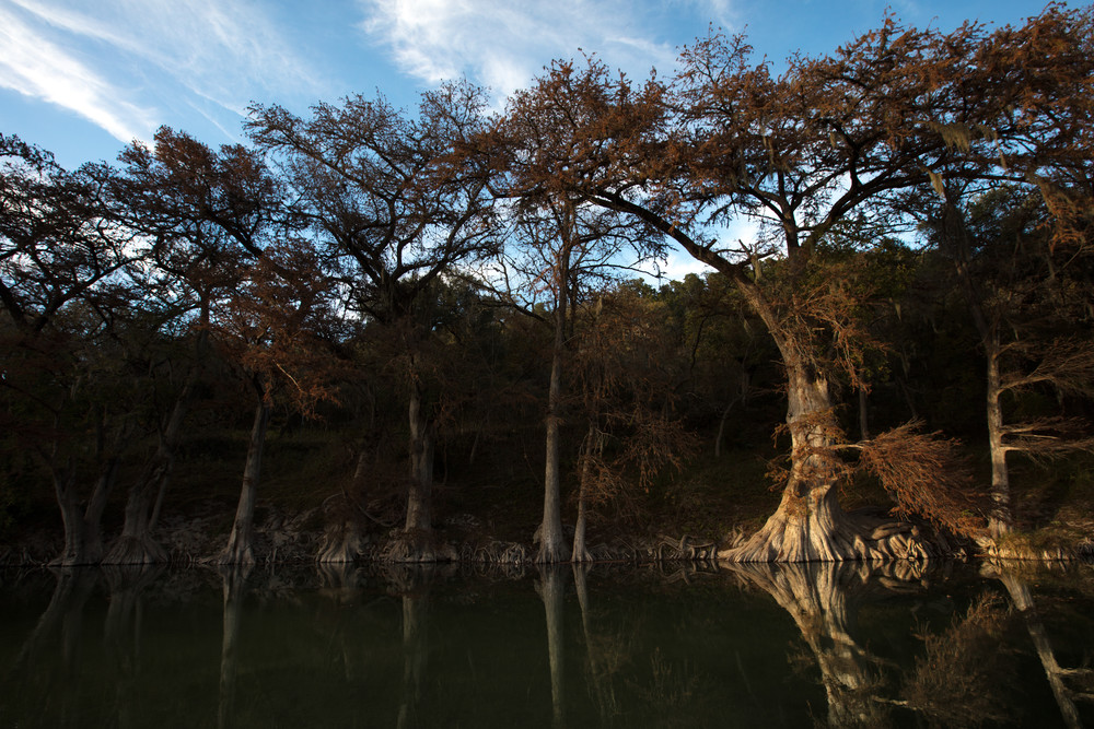 photo, cypress trees, Guadalupe River,  Texas Hill Country, blue, sky