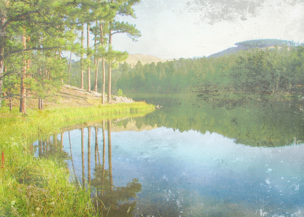 Reflections in the Black Hills