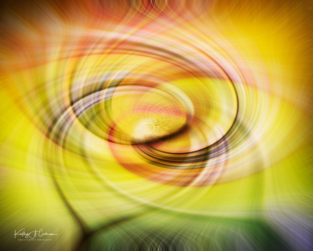 It Must Be Spring Twirl Photography Art | Images2Impact