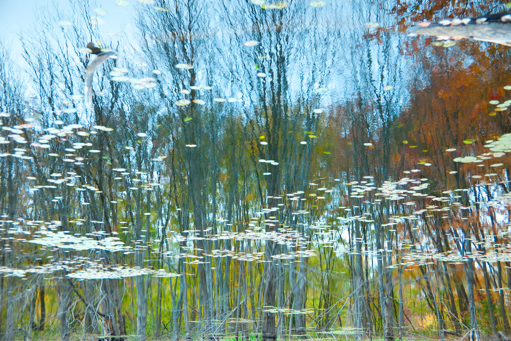 Reflection 3 Photography Art | MPF Gallery