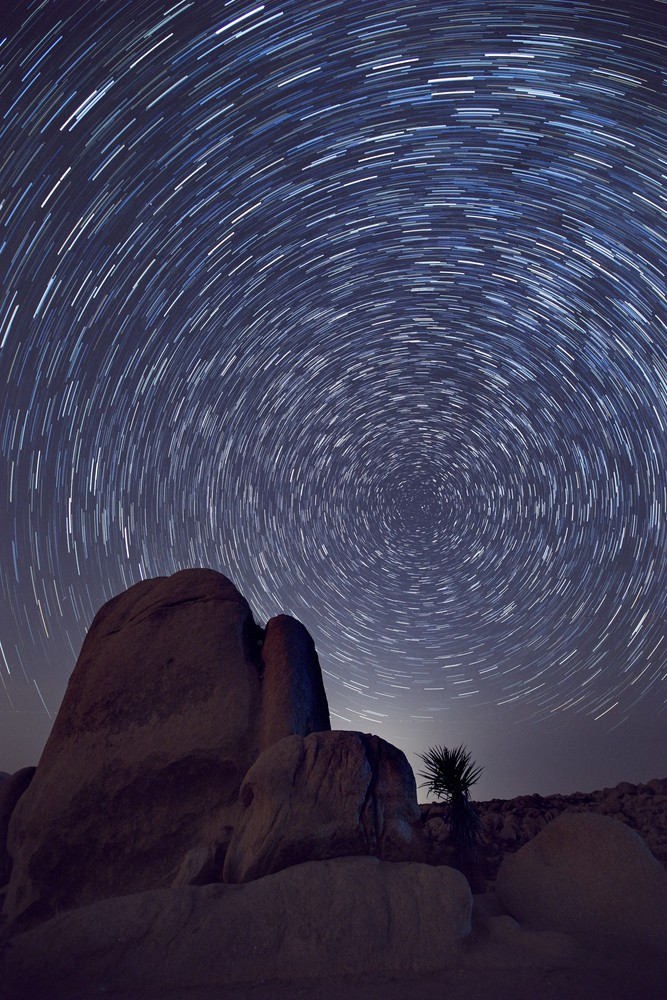 Star Trails In Joshua Tree Art | Chad Wanstreet Inc
