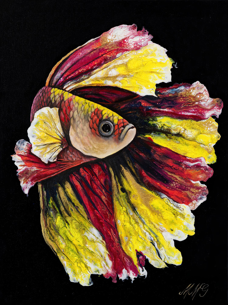 Spanish Betta  Art | MMG Art Studio | Fine Art Colorado Gallery