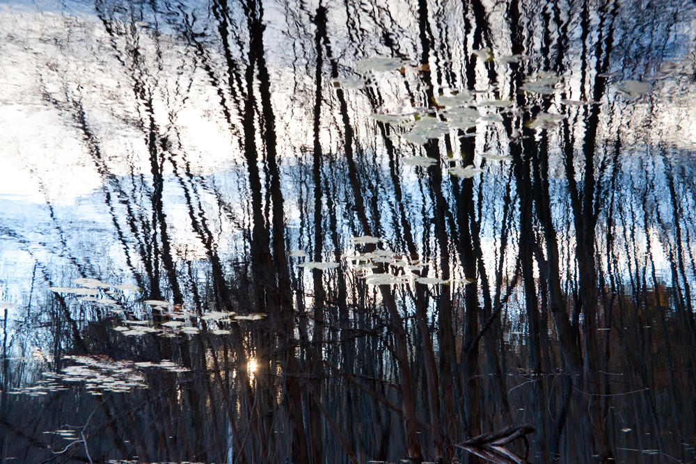 Reflection 12 Photography Art | MPF Gallery