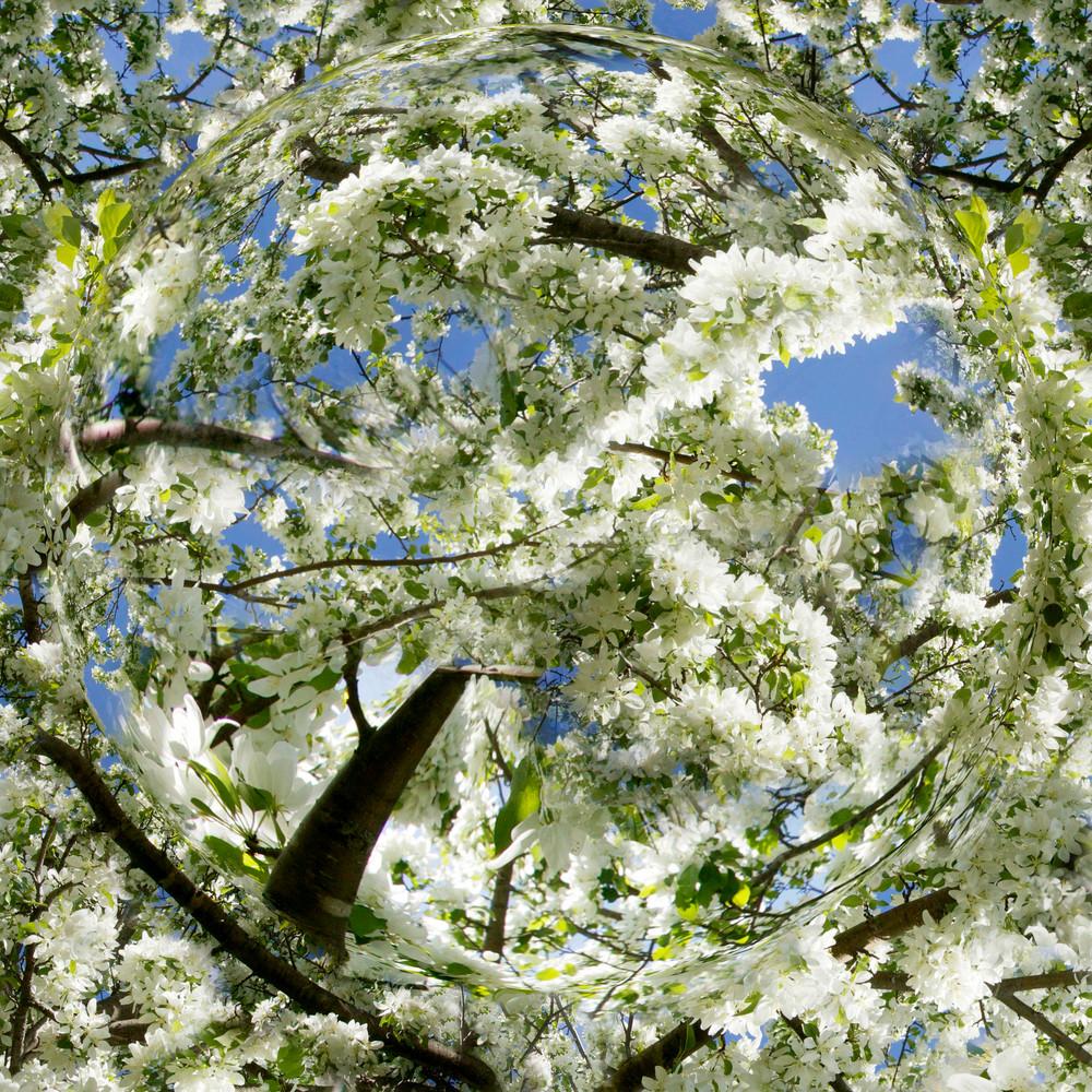 Flowering Spring Planet Art   studio176