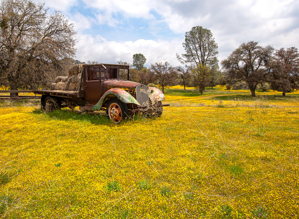 Flatbed Floral Meadow Photography Art | Josh Kimball Photography