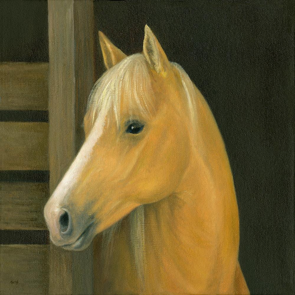 palomino, palomino-horse, horse-barn, horse-portrait