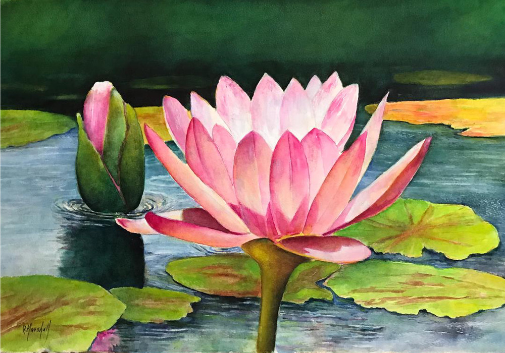 Light of the Lily, From an Original Watercolor Painting