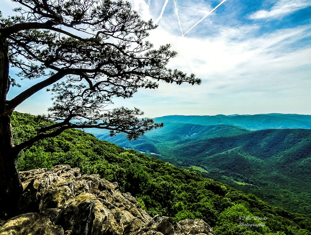 Blue Ridge Parkway Overlook Photography Art | N2 the Woods Photography