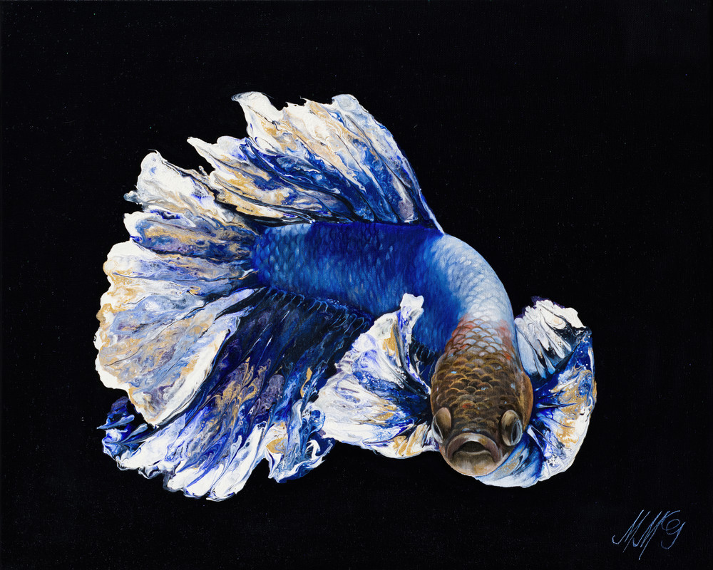 Sapphire Betta Art   MMG Art Studio   Fine Art Colorado Gallery