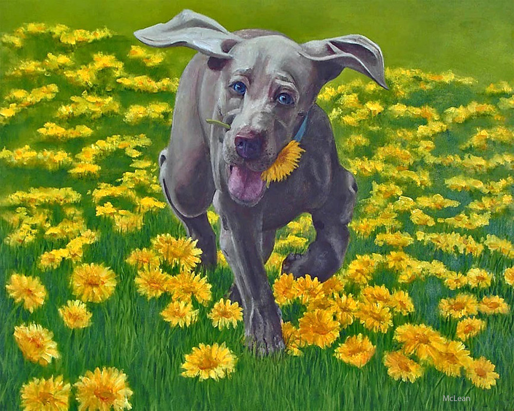Lily, From an Original Oil Painting