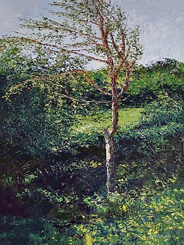 Poplar Tree, From an Original Oil Painting