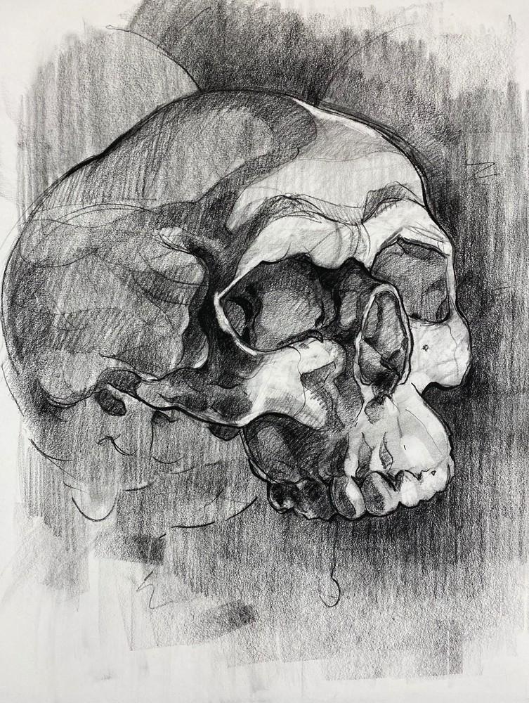 Skull V.9 Art | Matt Pierson Artworks
