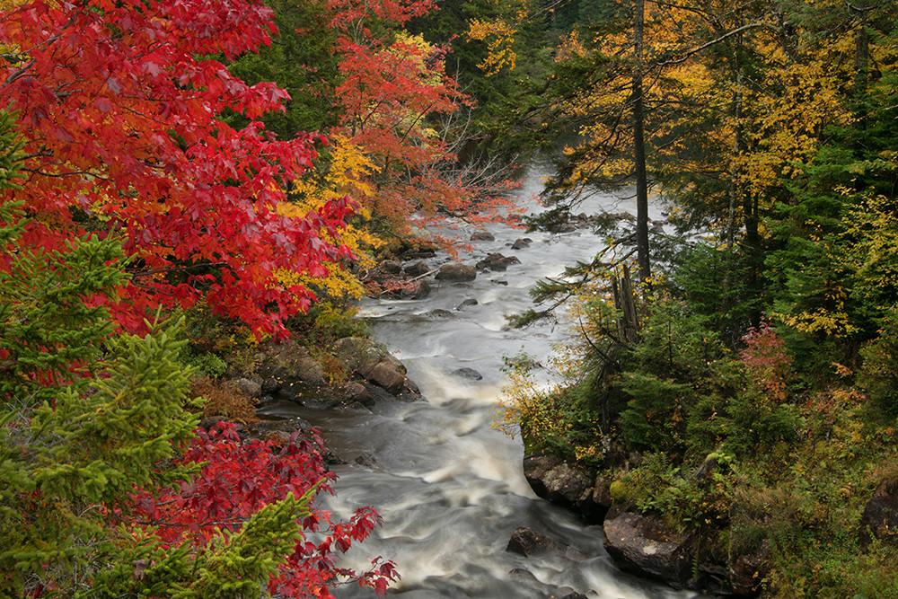 Lower Bog River - Adirondacks - Michael Sandy Photography