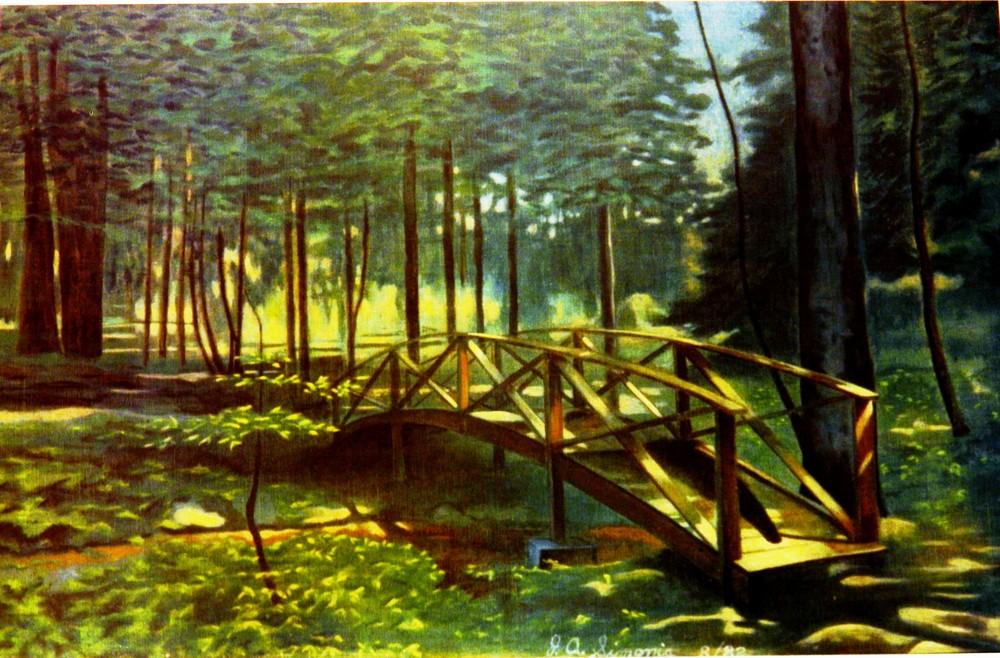Light On The Forest Floor  Art | John Simonis Art Gallery