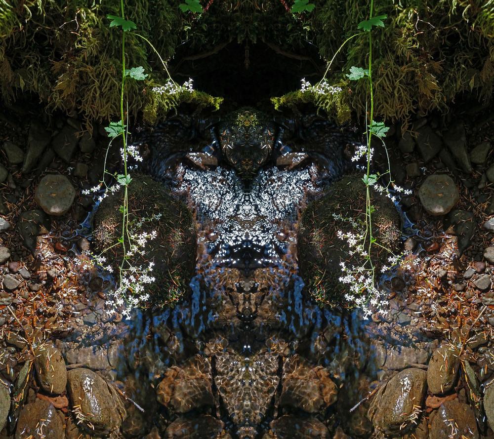 Mirror 1272_The Spirit Of The Creek