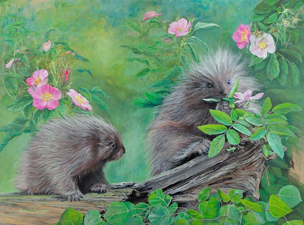 Baby Porcupines  Art | artalacarte