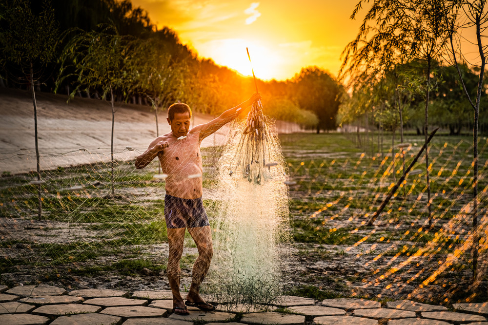 The Fisherman and His Net