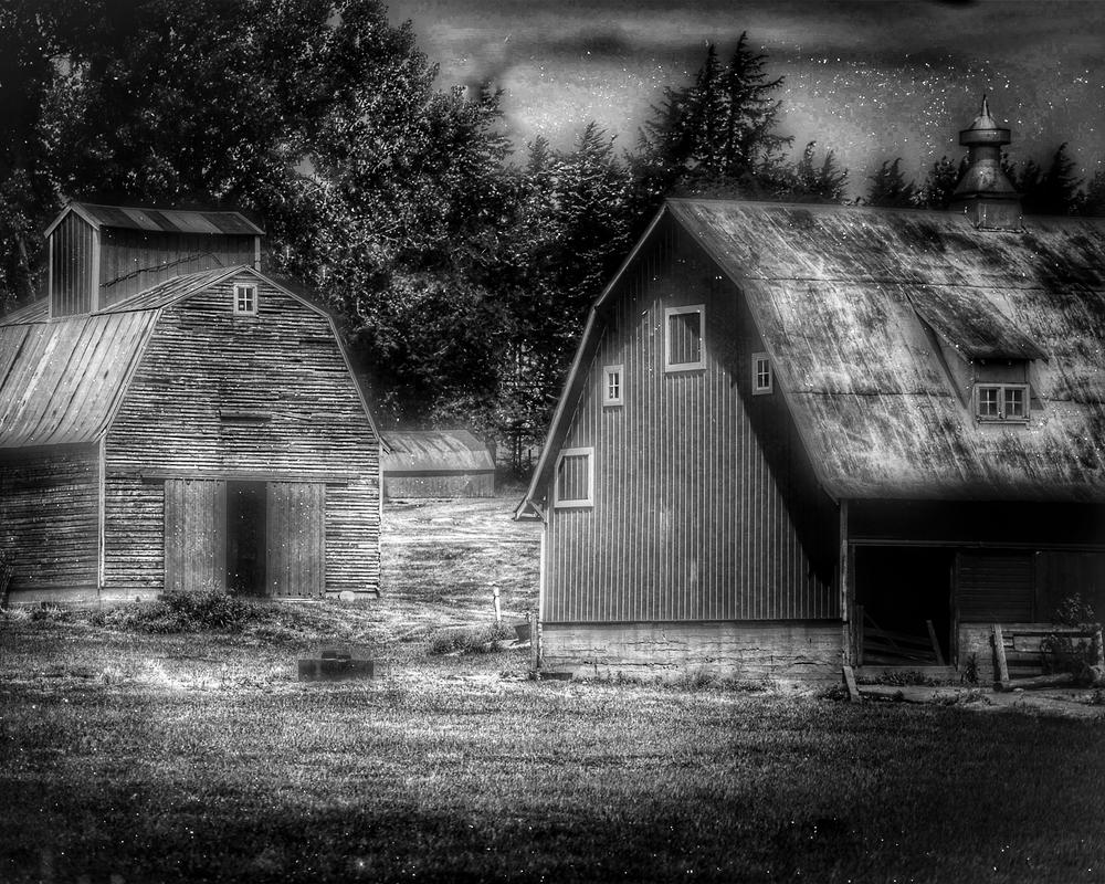 Barns In Bw Photography Art   Happy Hogtor Photography