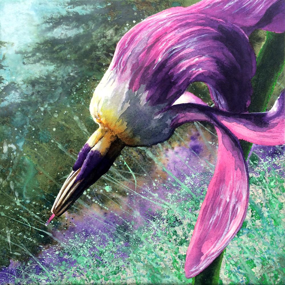 Living Star is a floral watercolor by Montana artist Joe Ziolkowski.