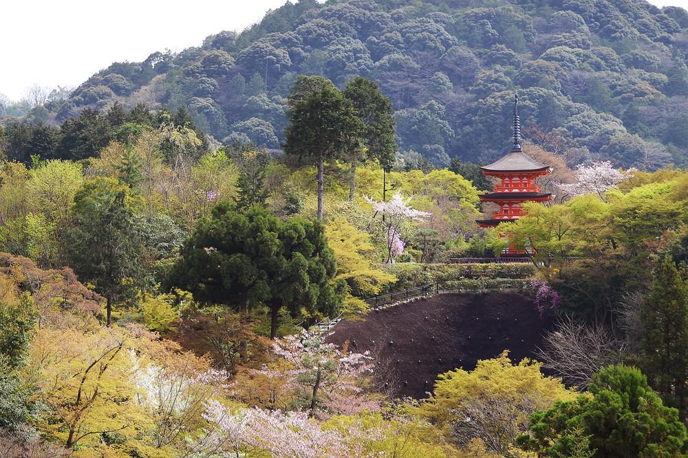 Kyoto, Japan Photograph – Zen Photography - Fine Art Prints on Canvas, Paper, Metal & More