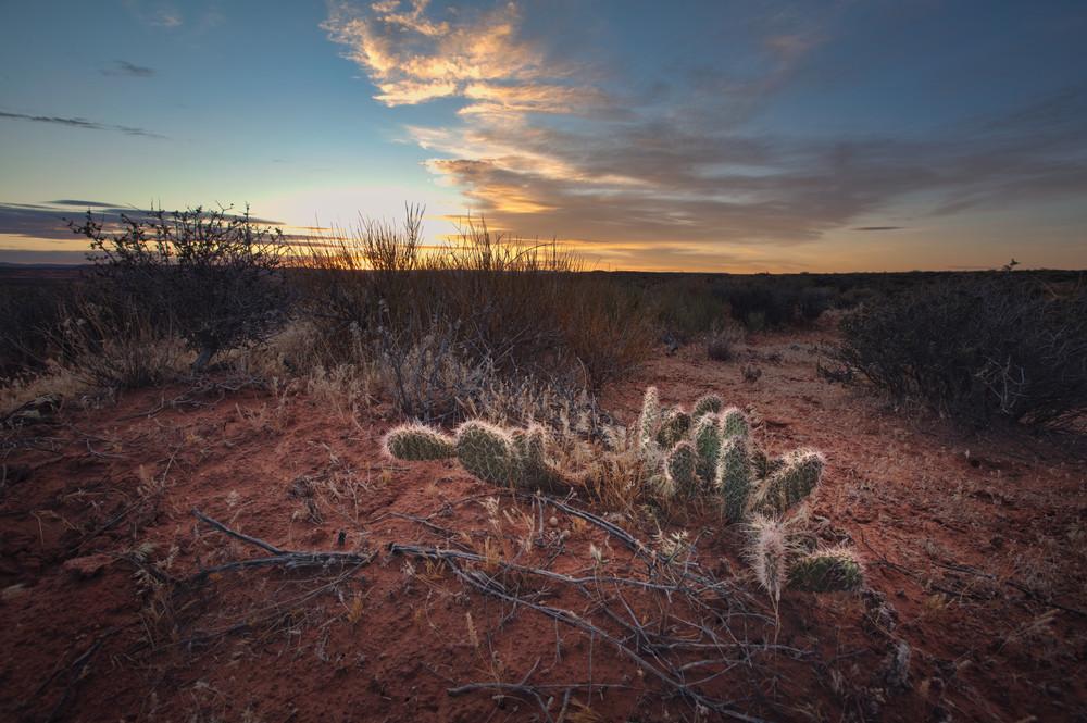 Day Break In The Desert Art | Chad Wanstreet Inc