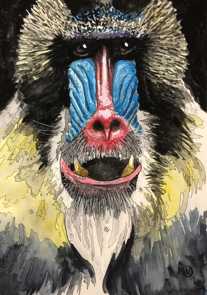 Mandrill Art | Water+Ink Studios