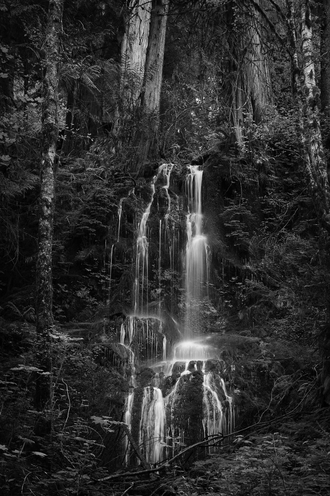 Springtime Waterfall, Olympic National Park, Washington, 2016
