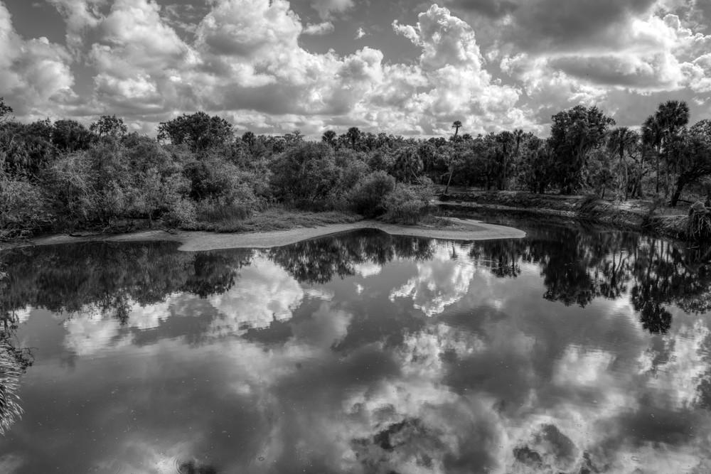 Myakka River Photography Art | Paul J Godin Photography