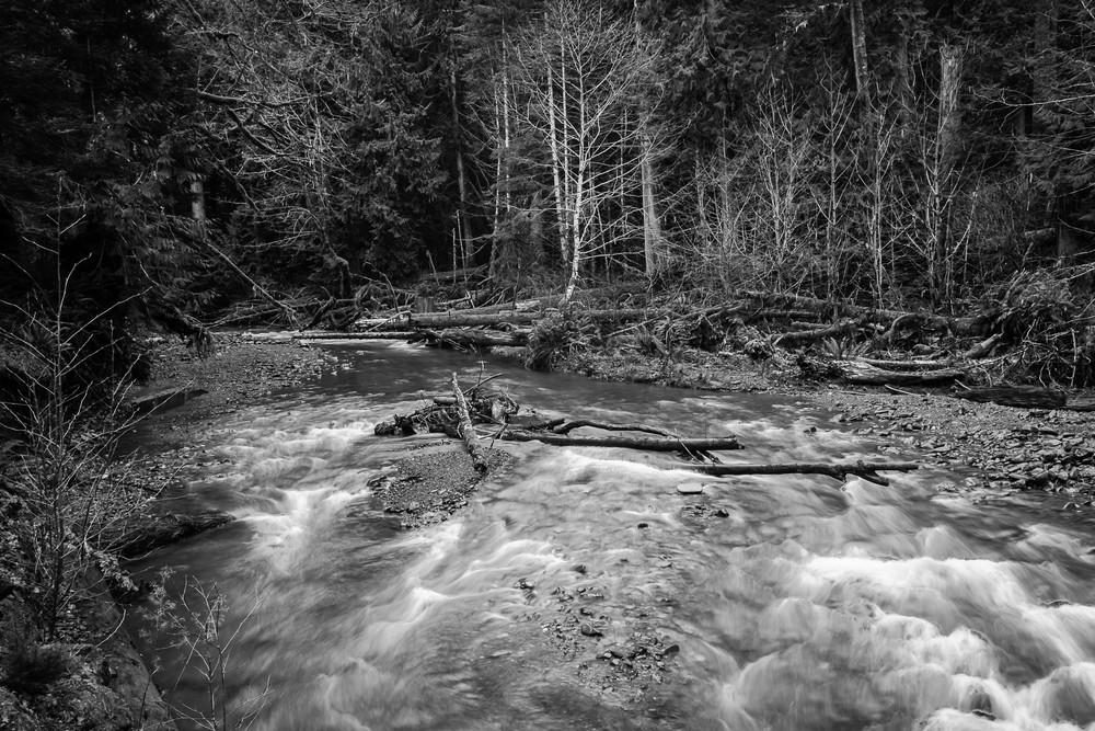 Barnes Creek, Olympic National Park, Washington, 2016