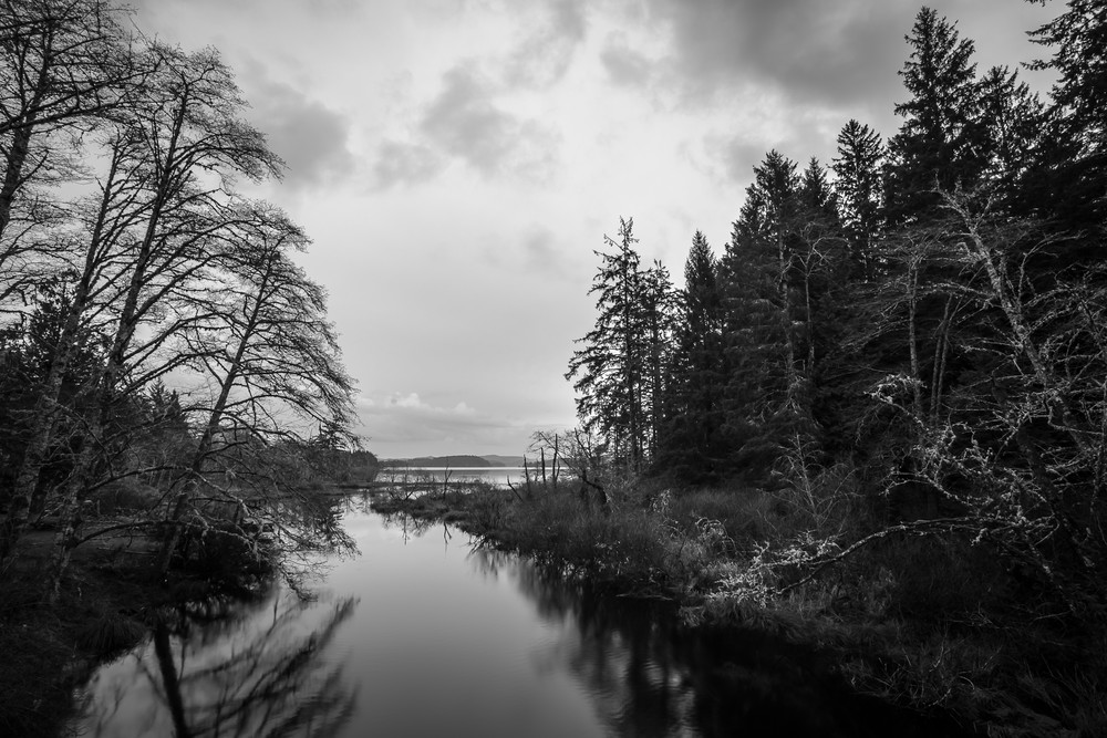 Headwaters of the Ozette River, Olympic National Park, Washington, 2016