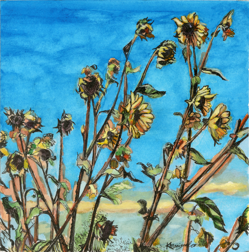 """Santa Fe Wild Sunflowers"""