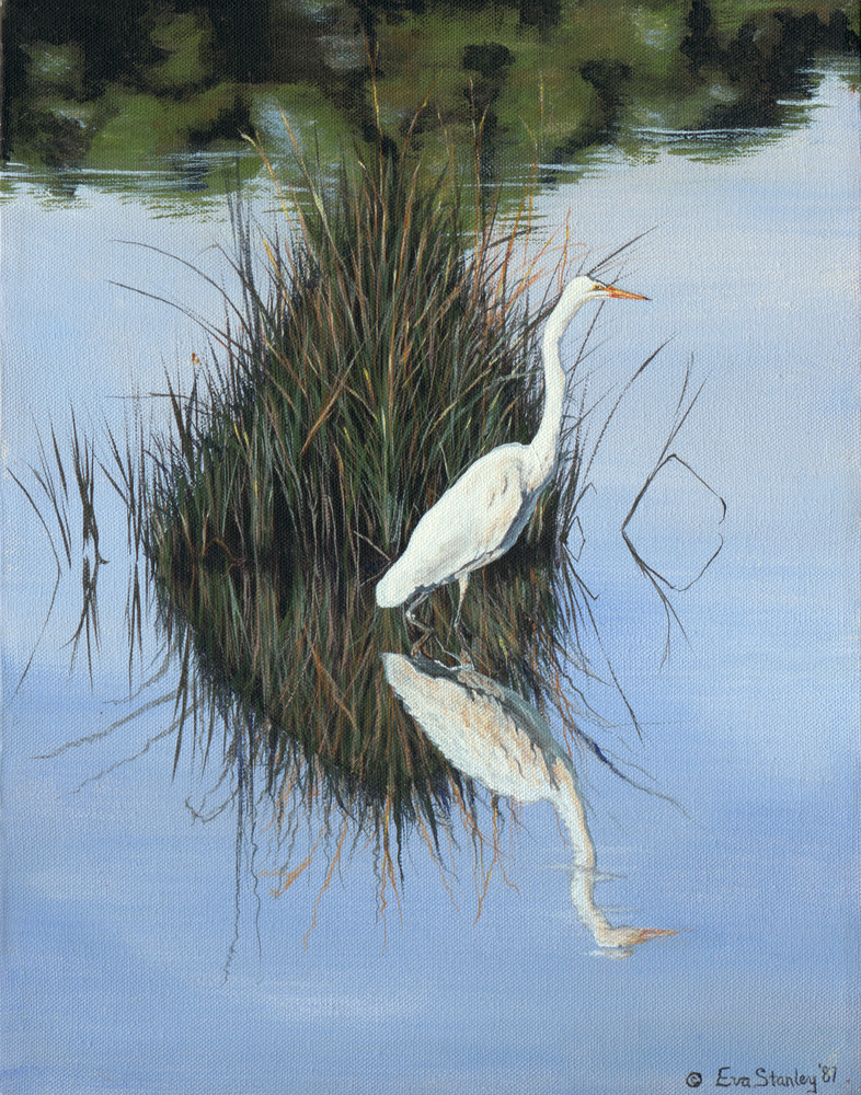 """""""Quiet Morning In The Marsh""""   Great Egret Art 