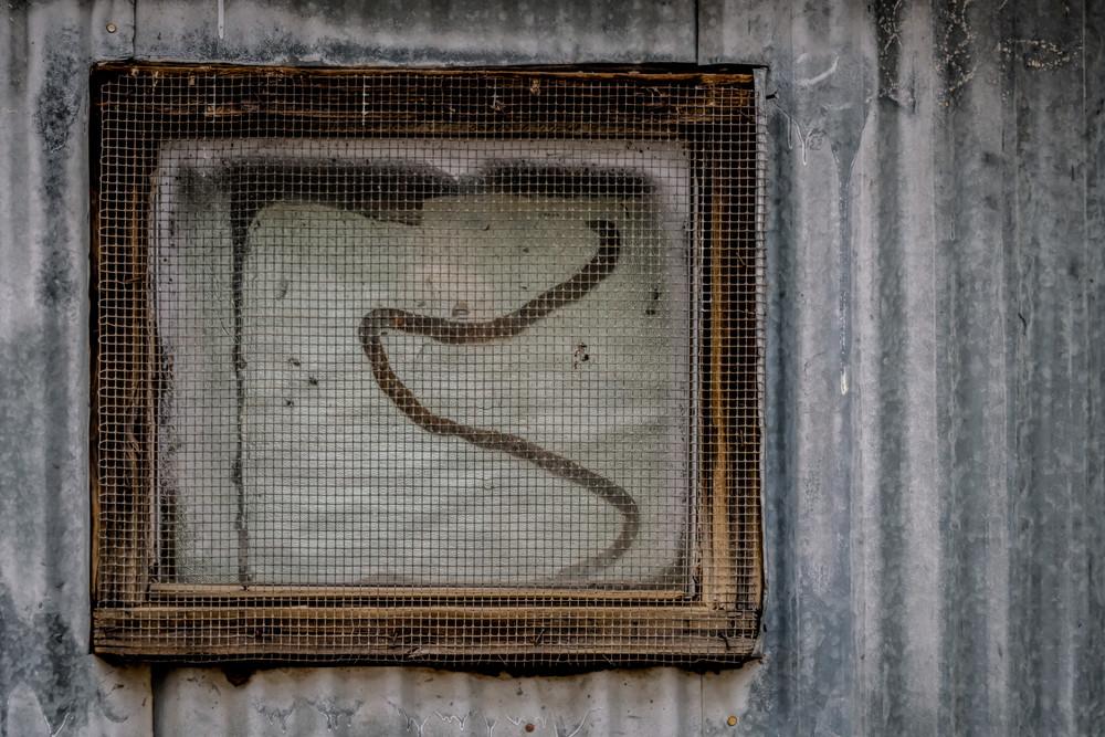 Screen Shot Photography Art | Monty Orr Photography