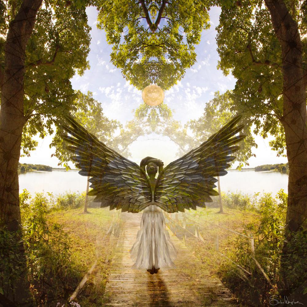 Angelicus Art | Sondra Wampler | fine art
