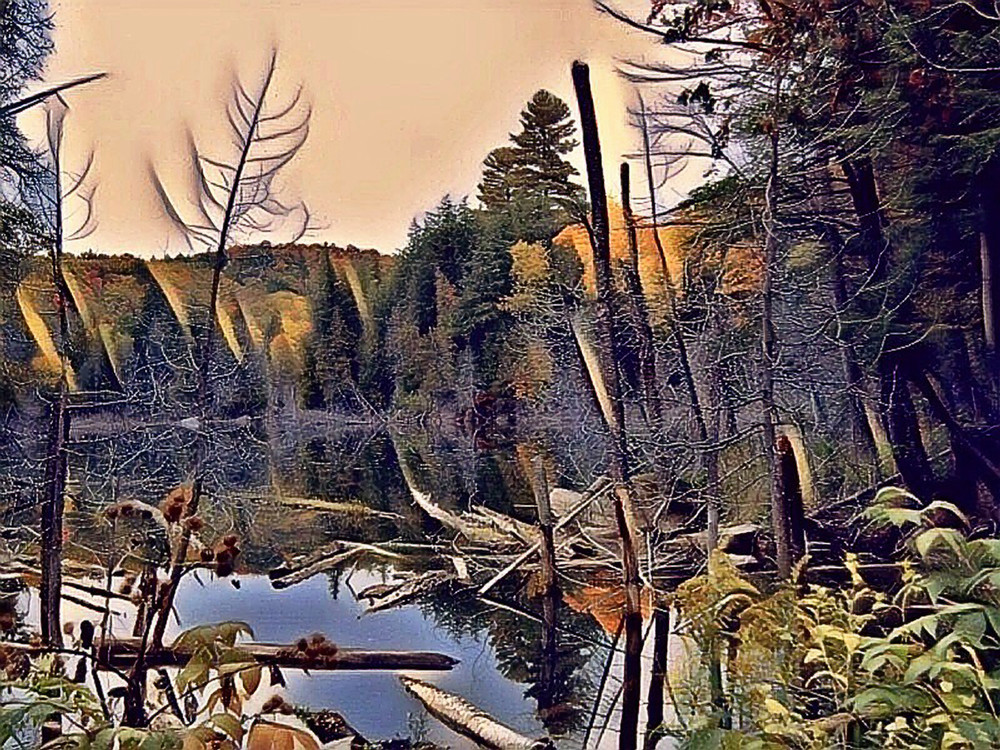 Lac Marion Art | Maciek Peter Kozlowski Art