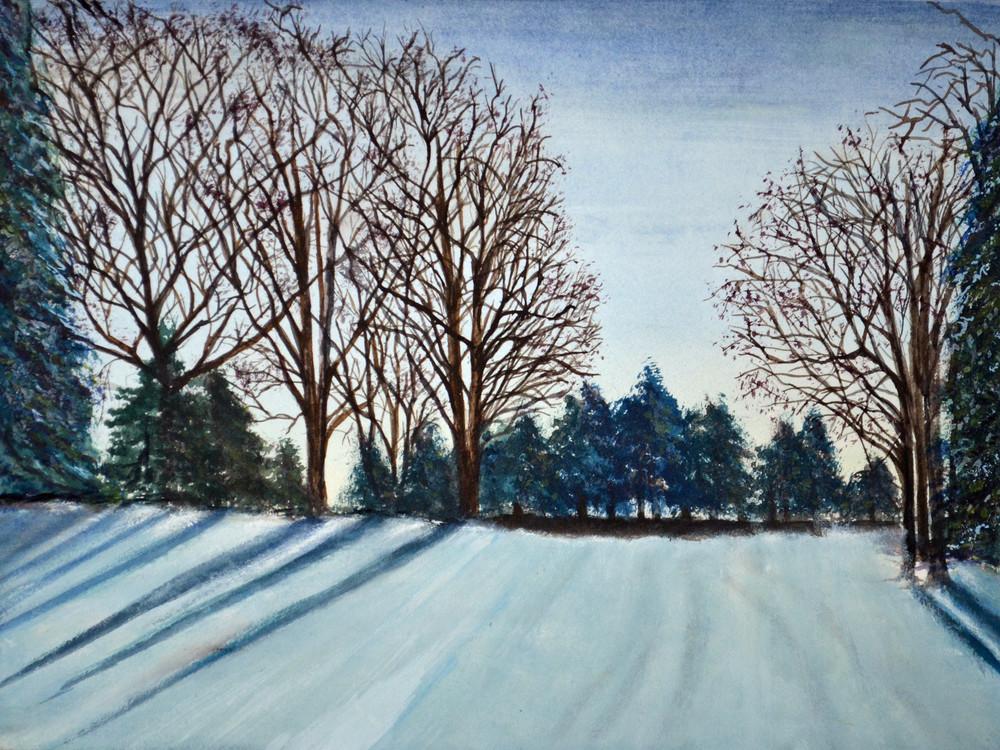 Shadows Through The Trees  Art | Sharon Bacal - Fine Art