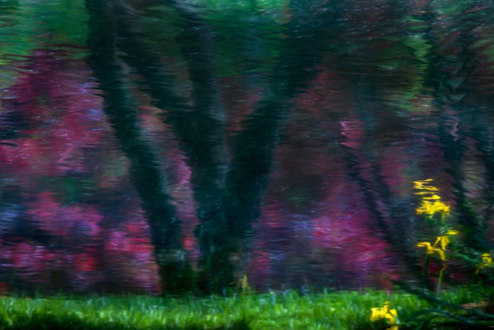 Deep Reflection Photography Art | Thomas Yackley Fine Art Photography
