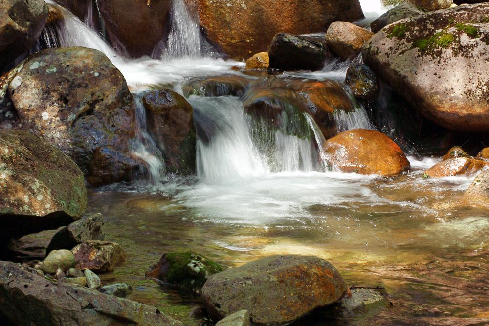 Gorge Brook Trail Mt Moosilauke Photography Art | Eric Hatch