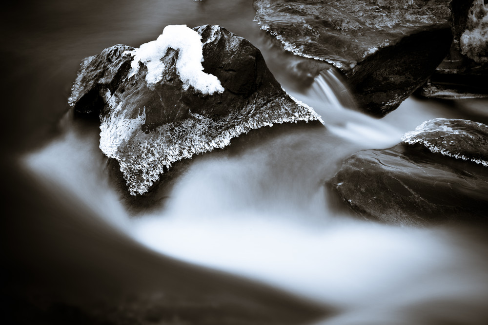 Nature Bw 2354 Photography Art | Dan Chung Fine Art
