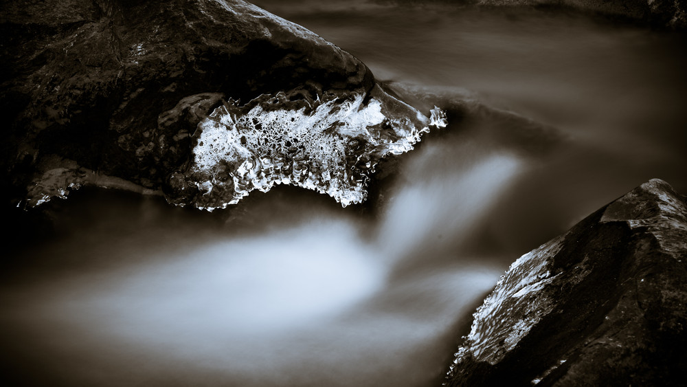 Nature Bw 2364 Photography Art | Dan Chung Fine Art