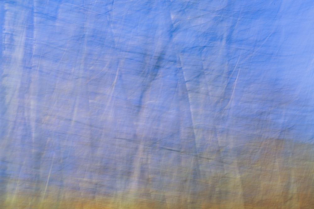 Nature Abstract 4646 Photography Art | Dan Chung Fine Art