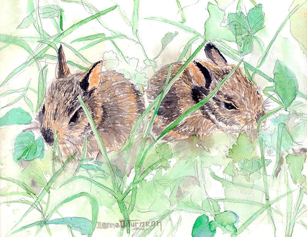 Eastern Cottontail Babies  Art   artalacarte