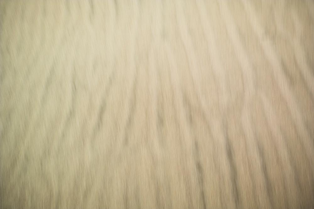 Windy Sand