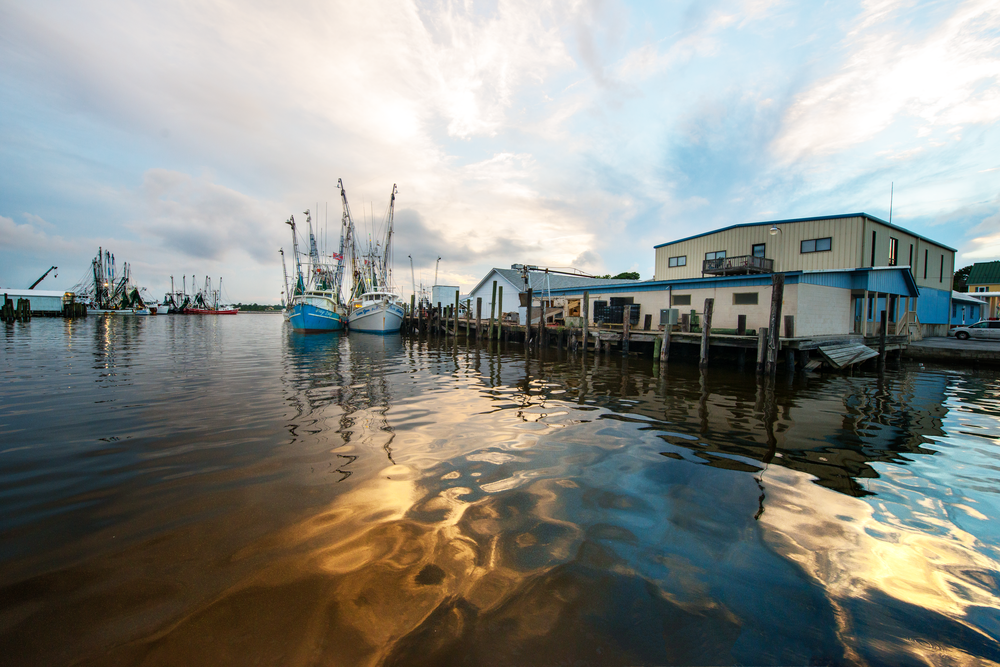 Shrimpboats In The Evening Photography Art | Eric Hatch