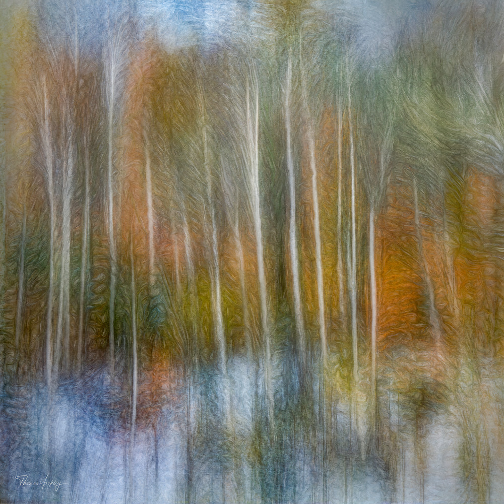 Impressions Of Autumn Photography Art   Thomas Yackley Fine Art Photography