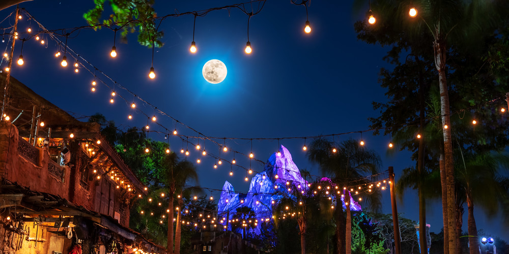 Lights Of Expedition Everest Photography Art | William Drew Photography