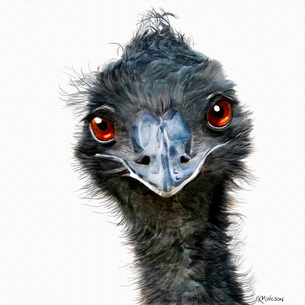 Emu, Hugh, Chuck, Kevin